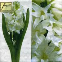 20 serviettes papier white hyacinth