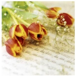 20 serviettes papier Musical Flowers